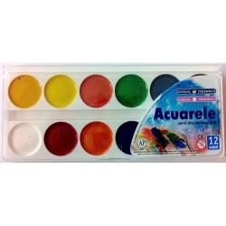 Acuarele semiuscate 12 culori Pigna